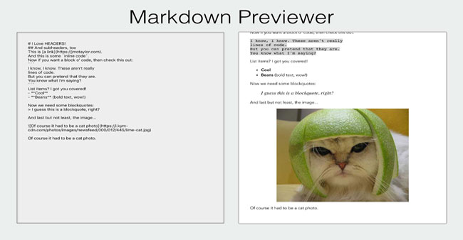Markdown Previewer image